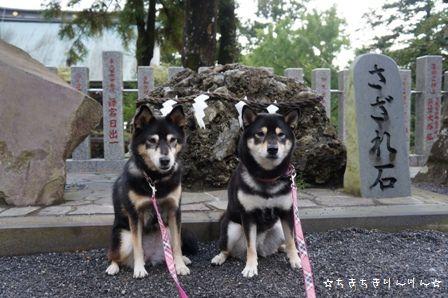 筑波山神社⑤