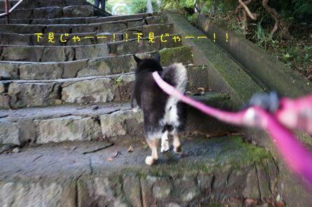 筑波山神社⑥