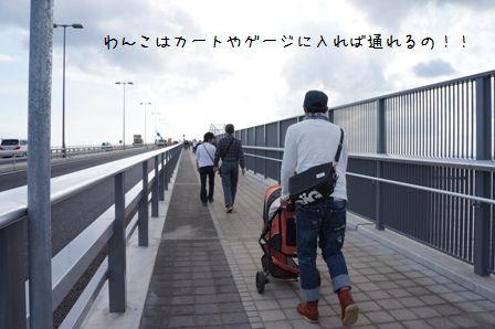 ゲートブリッジ⑤