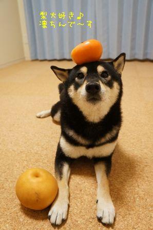 柿&新高梨