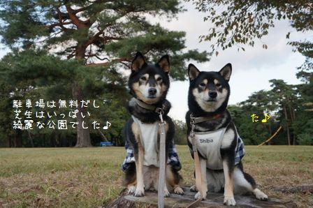 稲荷山公園①