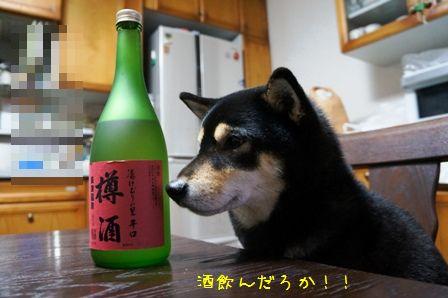 食いしん坊凜①