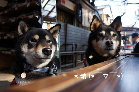 鬼太郎茶屋③