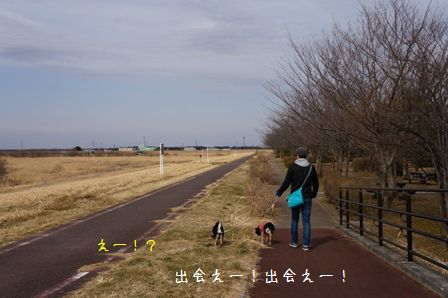 関宿城博物館①