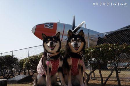 航空公園①