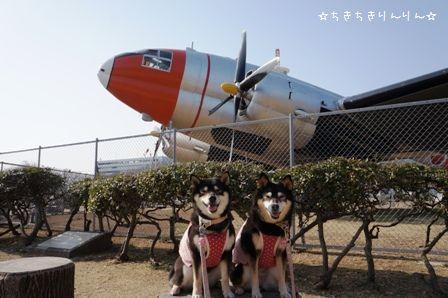 航空公園②