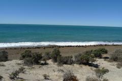 バルデス半島2
