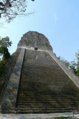 ティカル遺跡7