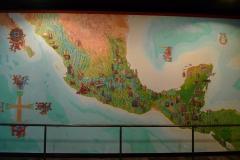 メキシコシティ1