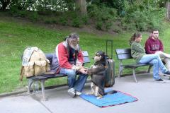 プラハの置物犬2