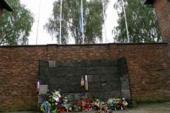 アウシュビッツ収容所6