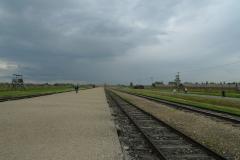 アウシュビッツ収容所5