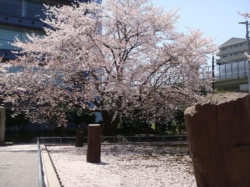 2012-4-16-02.jpg