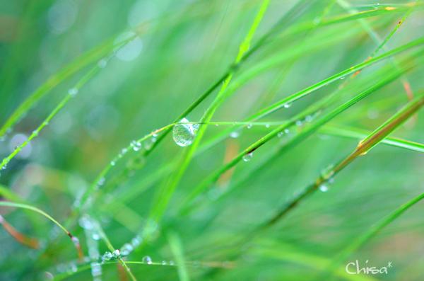 15b_20121115121212.jpg