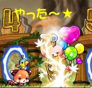 Maple110829_035629.jpg