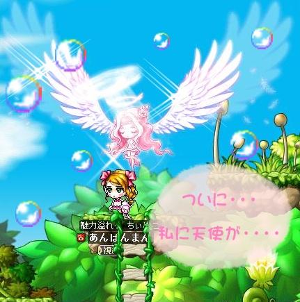 Maple110928_020347.jpg