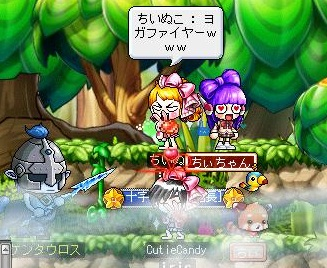 Maple120210_161211.jpg