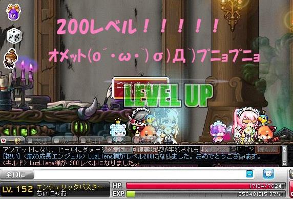 Maple130128_075512.jpg