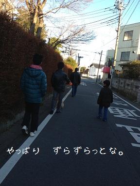 130102maple3.jpg
