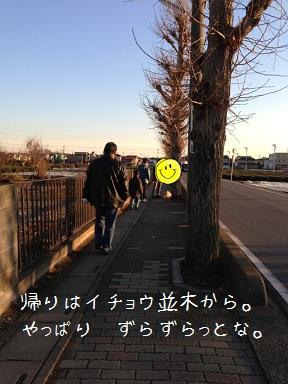 130102maple6b.jpg