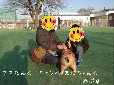130105maple4a.jpg