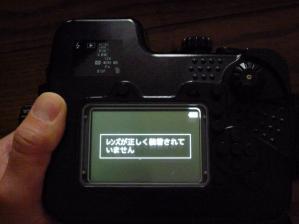 P1020284.jpg