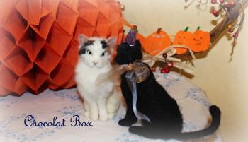 ハロウィン黒猫と三毛猫の内緒話