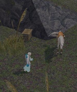 mabinogi_2010_04_15_001-crop.jpg