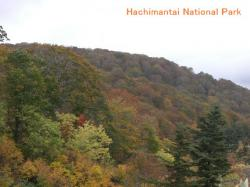 hachimantai2_convert_20101011221312.jpg