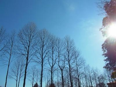 syukusyo-RIMG0481.jpg