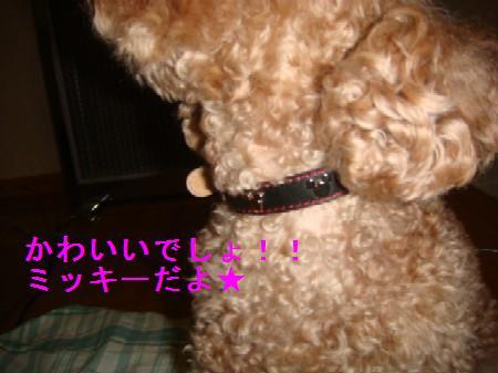 rusubann3_20100412225534.jpg