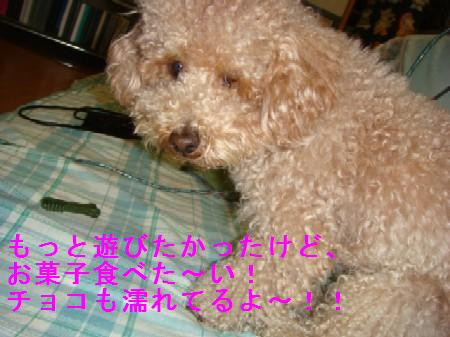 yuki3_20100315145735.jpg