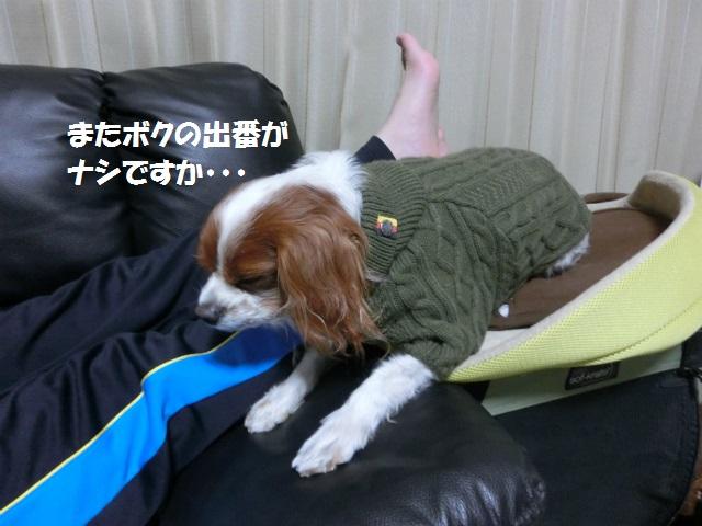 2014,1,09 洋介くん 051