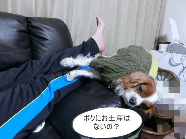 2014,1,09 洋介くん 050