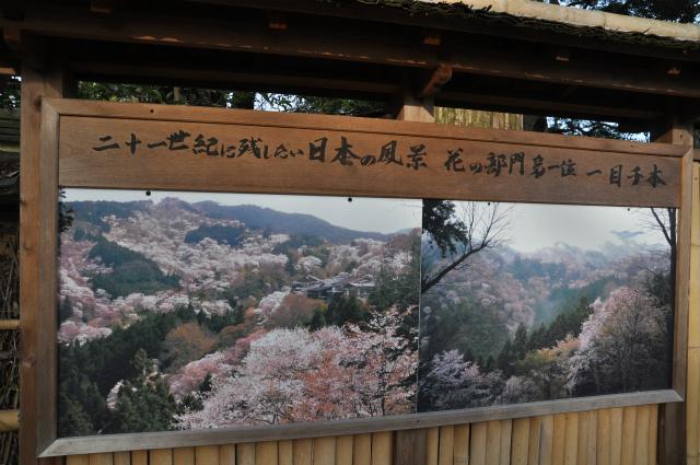 2014,1,14 遅めの初詣・ 100