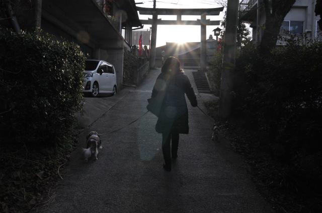 2014,1,14 遅めの初詣・ 133