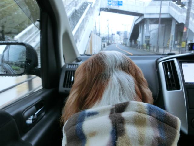 2014,1,26 瀬戸内海・牛窓の旅 002