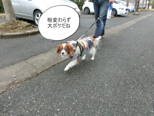 2014,1,26 瀬戸内海・牛窓の旅 029