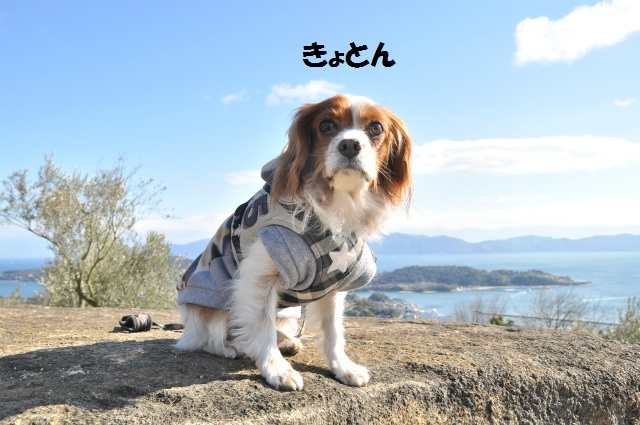 2014,1,26 瀬戸内海・牛窓の旅 129
