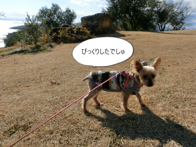 2014,1,26 瀬戸内海・牛窓の旅 103