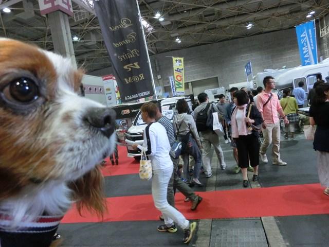 s-2014,09,21大阪キャンピング 030