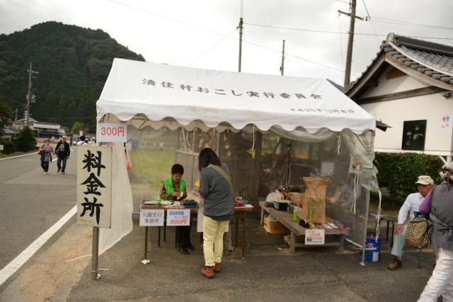 2014,10,12 清住コスモス畑 055