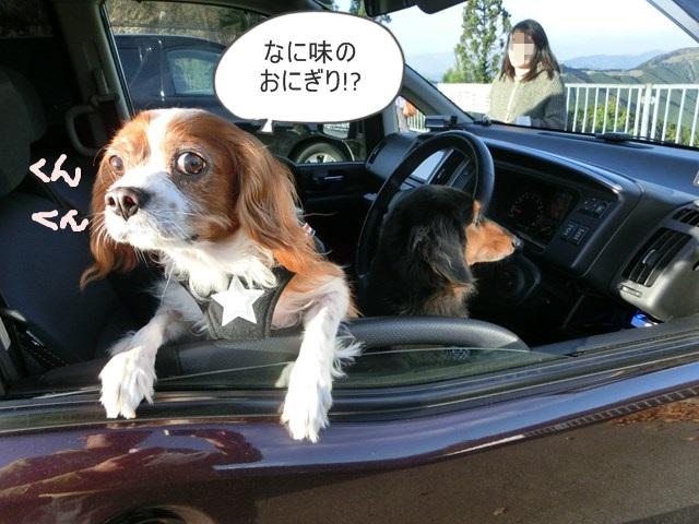 s-2014,11,10 万葉・紀州の旅 013