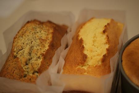 ケーキ 004
