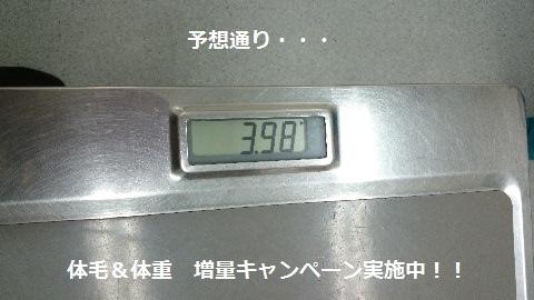 012708.jpg