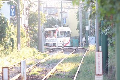 花電車 222