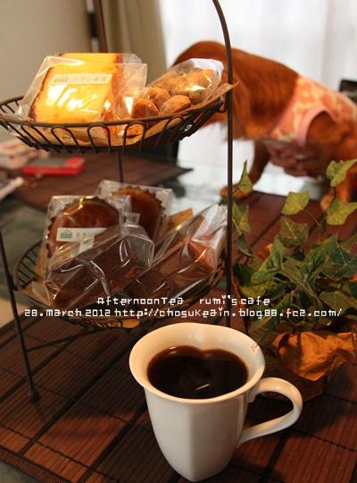 5 ルミカフェ