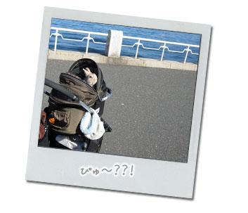 2013112332f.jpg