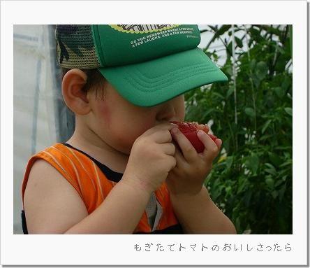 20070730_3.jpg