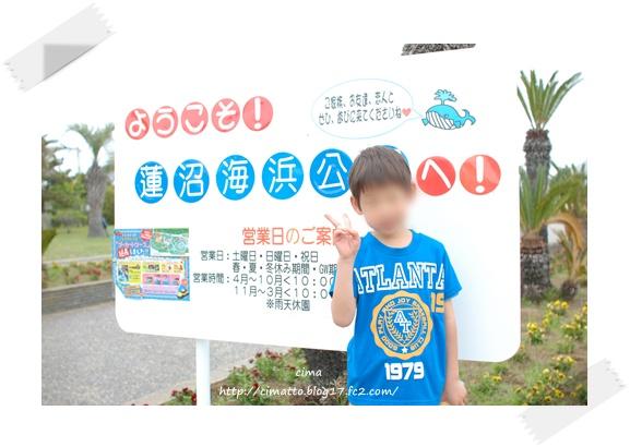 20120502_7.jpg